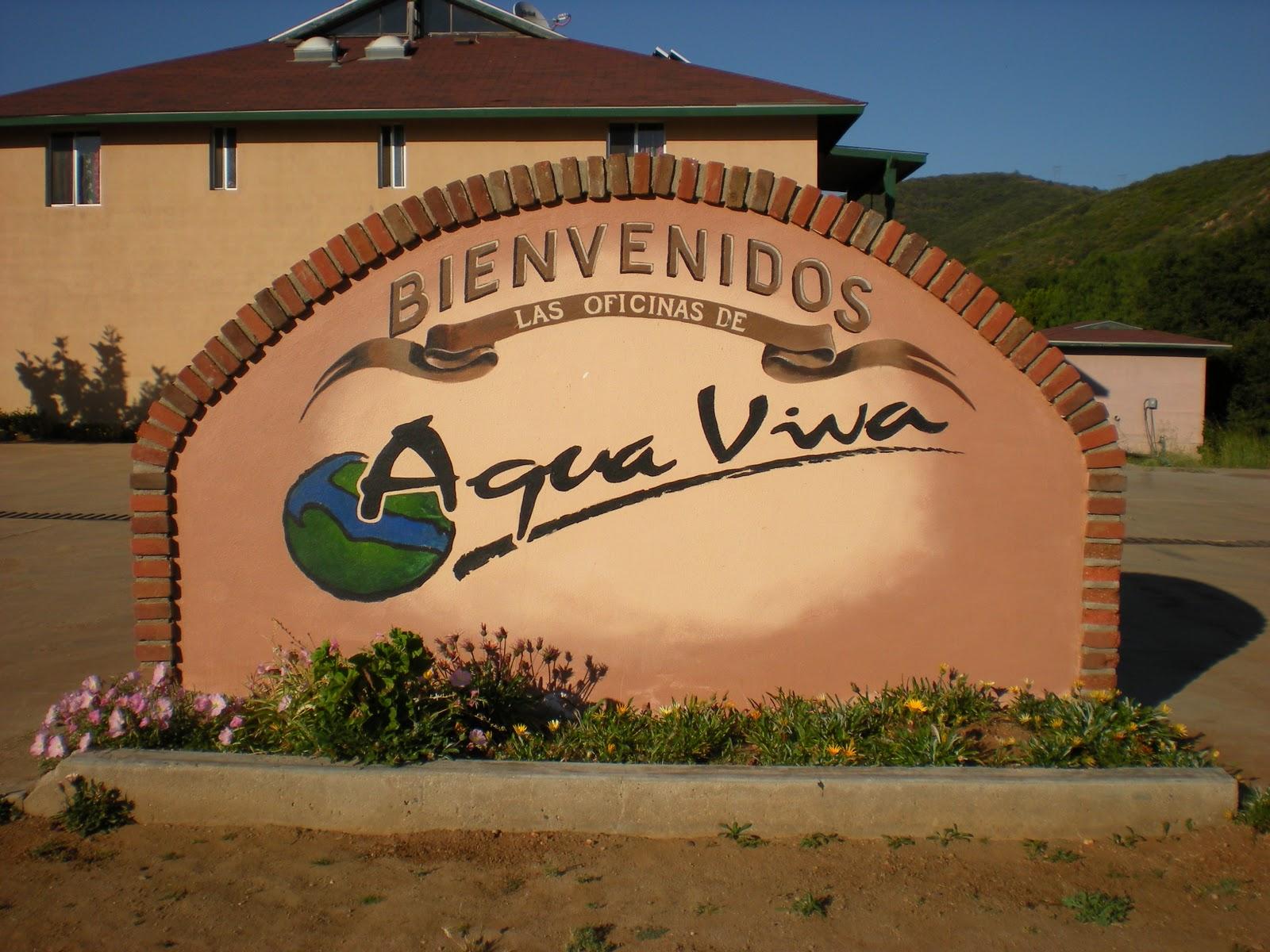 Agua Viva - Living Water